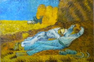 Sonno e Neuroscienze